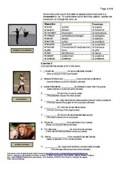 Spanish Nouns And Gender #1 People And Animals   Spanish