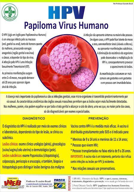 hpv e cancer masculino)