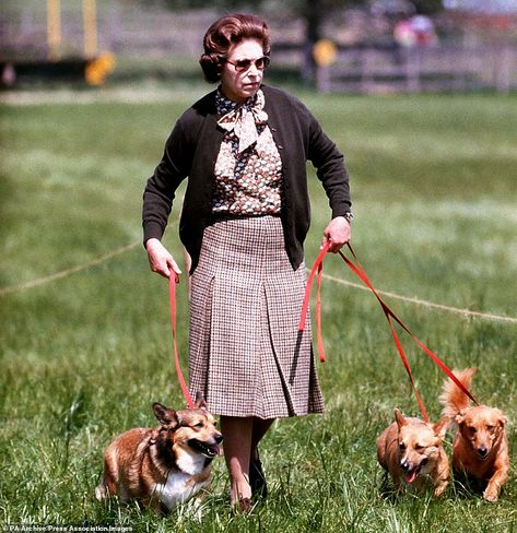 Queen Elizabeth II with some of her corgis walking the Cross Country course during the sec...