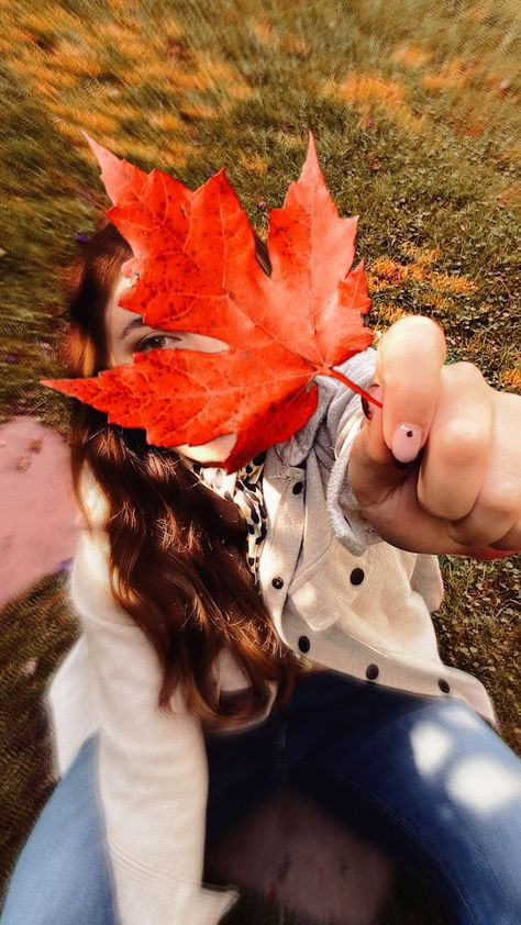 Take your annual Fall leaves post to the next level in seconds with Picsart Stickers 🍂