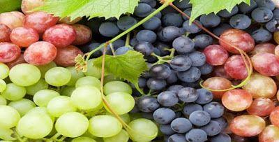 تفسير رؤية العنب في المنام Fruit Grapes Grapefruit Benefits