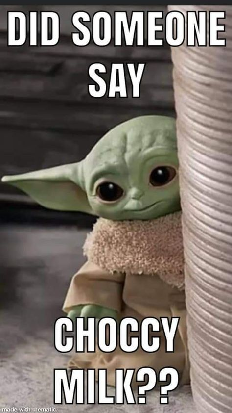 Choccy Milk Yoda : choccy, Chocolate, 10lilian