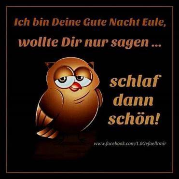 Gute Nacht Sprüche Lustig Facebook Gute Nacht Gute