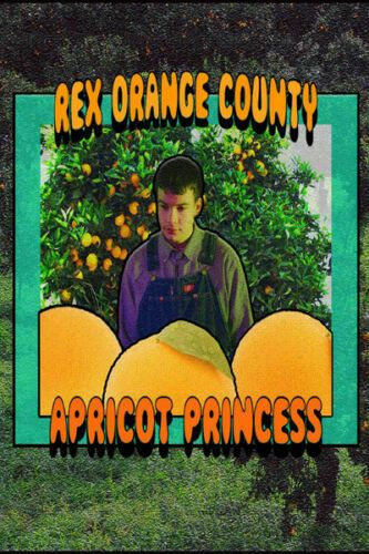 2436 Art Decor Rex Orange County Poster Hip Hop Pop Music Star - Music Poster - Ideas of Music Poster Room Posters, Band Posters, Poster Wall, Poster Prints, Bedroom Wall Collage, Photo Wall Collage, Picture Wall, Music Wall, Pop Music