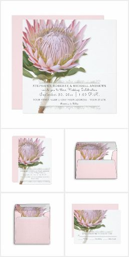 Floral King Protea Floral Blush Pink King Protea Flower Wedding Invitation Suite One Flower Wedding Invitation Wedding Invitations Rustic Protea Flower