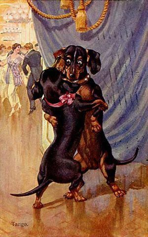 Pin By Samantha Neilson On For My Friend Vintage Dachshund