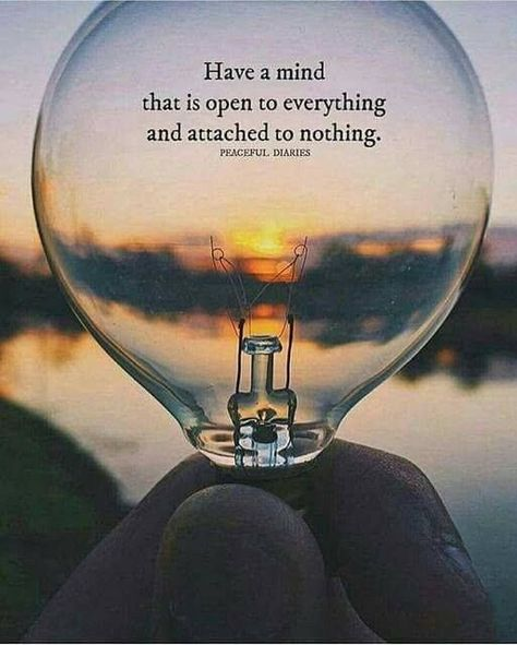 Positive Quotes : Have a mind that is open to everything..