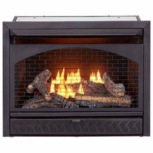 Procom Heating Vent Free Propane Natural Gas Fireplace Insert Wayfair In 2020 Gas Fireplace Insert Natural Gas Fireplace Propane Fireplace