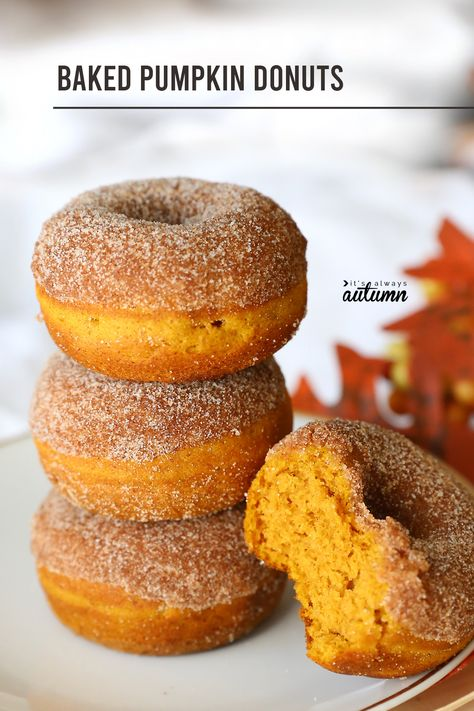 Baked pumpkin spice donuts are the perfect fall treat! The post Easy Pumpkin Spice Donuts baked not fried! Its Always Autumn appeared first on Win Dessert. Fall Desserts, Just Desserts, Dessert Recipes, Easy Pumpkin Desserts, Pumpkin Baking Recipes, Pumpkin Coffee Cakes, Pumpkin Pumpkin, Easy Baking Recipes, Cooking Recipes