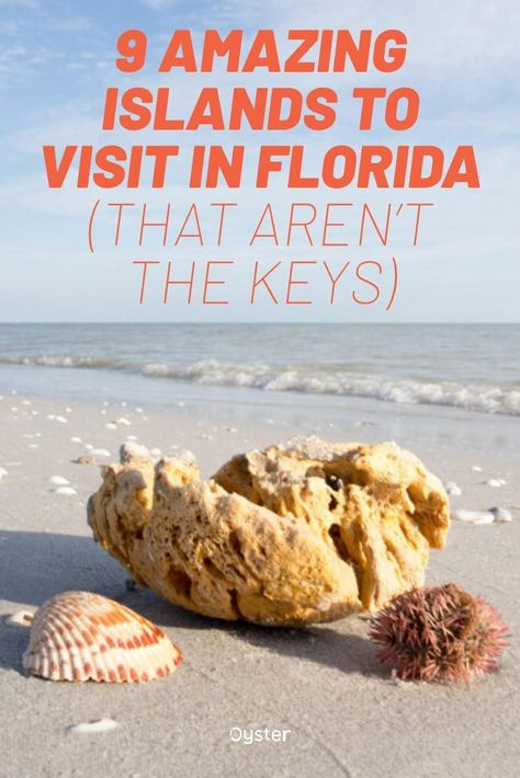 The Keys are a great experience, but it's time to spice up your next Florida vacation. Here are some awesome islands in Florida to visit on your next trip. Visit Florida, Florida Travel, Florida Beaches, Old Florida, Travel Usa, Florida Keys, Tampa Florida, Clearwater Florida, Naples Florida