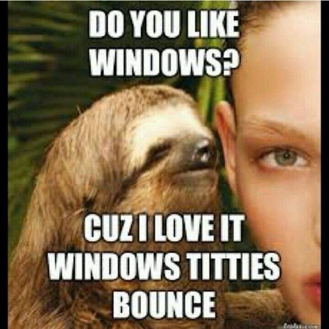 3c9c2ae9b153a35364a46efb325dd583 2452 best humor images on pinterest sloth, sloth memes and sloths