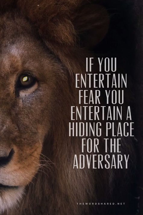 If you entertain fear  you entertain a hiding place for the adversary. #GoodNews #Wisdom #Inspiration #NoFear #Fearless