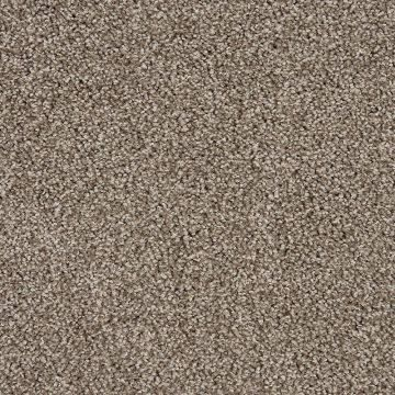 What Is The Most Durable Carpet Type Types Of Carpet Durable Carpet Best Carpet