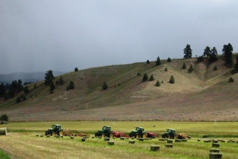 Brown Valley Ranch in Stevensville Montana. http://fayranches.com/ranches-for-sale/montana/brown-valley-ranch