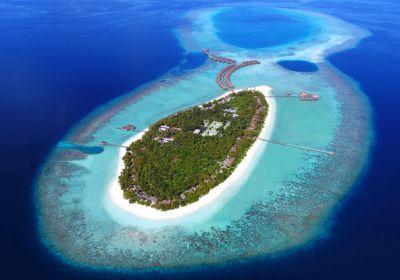 جزيرة مالي الشمالية في المالديف Floating City Maldives Travel Male Maldives