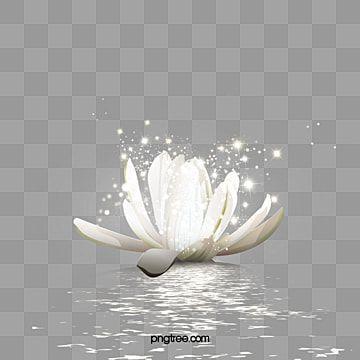 Pink Lotus Lotus Clipart Pink Lotus Png Transparent Clipart Image And Psd File For Free Download Hd Flowers Watercolor Lotus Lotus Art
