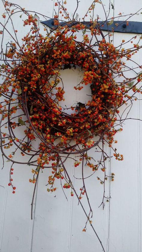 Simple and Elegant Fall Wreath Ideas DIY Fall Wreaths Elegant Fall Wreaths, Easy Fall Wreaths, Diy Fall Wreath, Holiday Wreaths, Wreath Ideas, Winter Wreaths, Spring Wreaths, Summer Wreath, Bittersweet Vine