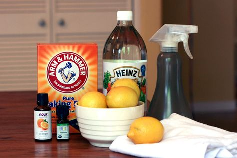 Vegan on a Budget: Make Your Own Cleaning Products, Guaranteed Cruelty Free! - Well Vegan