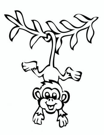 Affe Malvorlage Kostenlos Affen Ausmalbilder 1