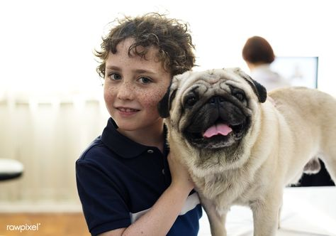 Download Premium Image About Pug Dog And Vet 260781 Pets Pet Pug Dogs