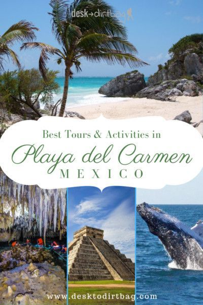10 Best Playa Del Carmen Tours Activities That You Don T Want To