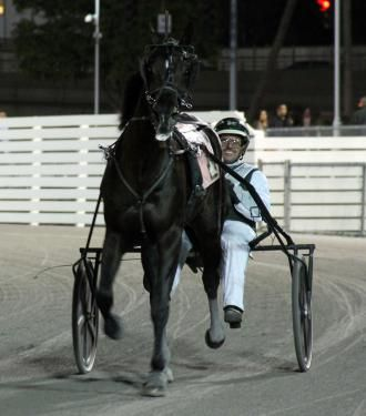 Harness Racing Daily Racing Form Harness racing Pinterest - racing form