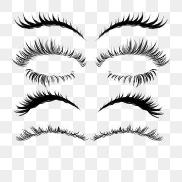 Hand Painted Beautiful Eyelashes Eyelash Fake Eyelashes Makeups Png Transparent Clipart Image And Psd File For Free Download Fake Eyelash Makeup Fake Eyelashes Longer Eyelashes