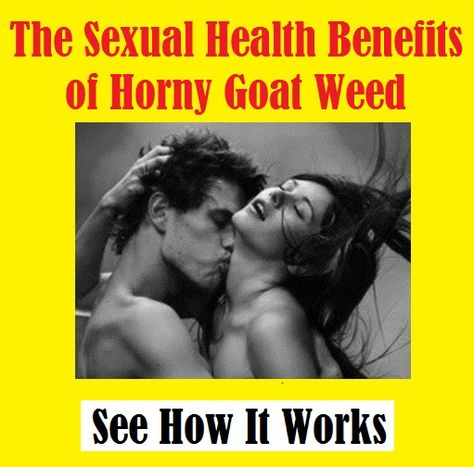 #Horny #goat weed also known, among other things as Yin Yang Huo or Epimedium, has been around as a sex booster for hundreds of years and was discovered quite accidentally by goat herders who noticed that their goats became #sexually #aroused after eating the weed...  Get resource -  http://favstore.net/phgw/?id=efficient