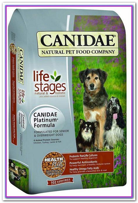Best Dry Dog Food For Senior Large Breed Top 10 Best Senior Dry