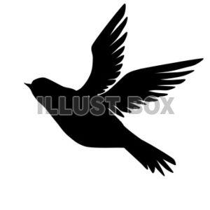 鳥シルエット