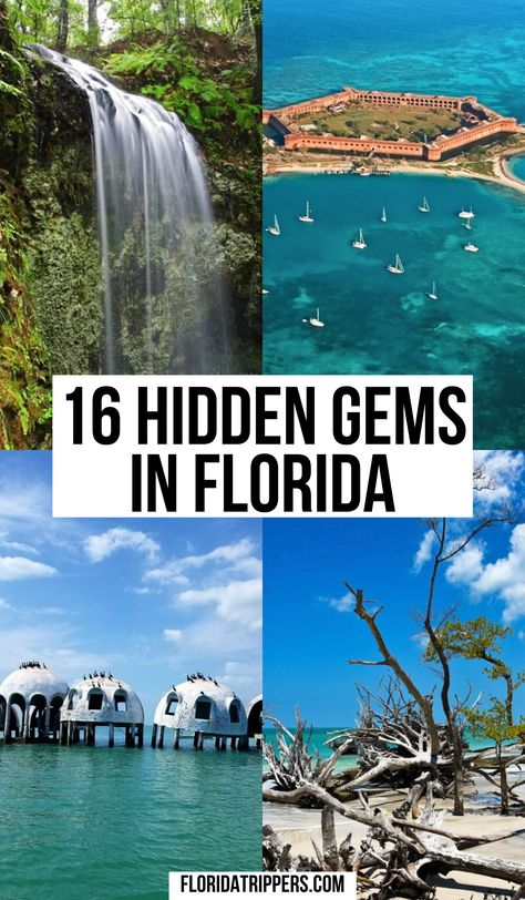 Florida Vacation Spots, Florida Travel Guide, Places In Florida, Usa Travel Guide, Visit Florida, Travel Usa, Florida Keys, Cool Places To Visit, Places To Travel