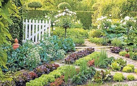 Garden Landscape Design Competition Luxury Uk Garden Design Petition Telegraph Garten Grundriss Gartendesign Ideen Design Kleiner Garten