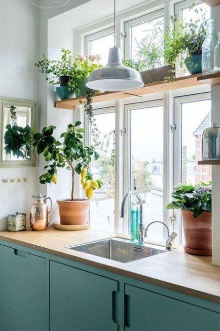 Kitchen Window Shelf Plants 44 New Ideas Home Decor Kitchen Kitchen Sink Design Kitchen Window Shelves