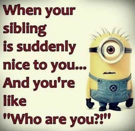 When Your Sibling Is Suddenly Nice To You minion minions minion quotes minion quotes and sayings Humor Disney, Funny Disney Jokes, Silly Jokes, Funny Minion Pictures, Funny Minion Memes, Minions Quotes, Minion Humor, Funny Images, Funny Photos