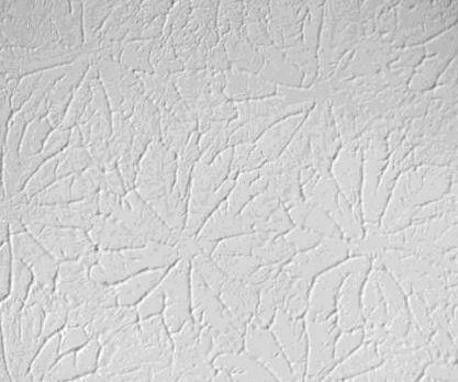 Ceiling Texture Wall Painting Ideas Brick Stone Concrete White T