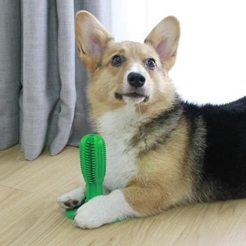 Pet Paw Cleaner Dog Toothbrush Dog Teeth Brushing Teeth