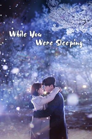 While You Were Sleeping Sub Indo : while, sleeping, Nonton, While, Sleeping, (2017), Drama, Korea, Streaming, Online, Subtitle, Indonesia, FilmEpik, Drama,, Korea,