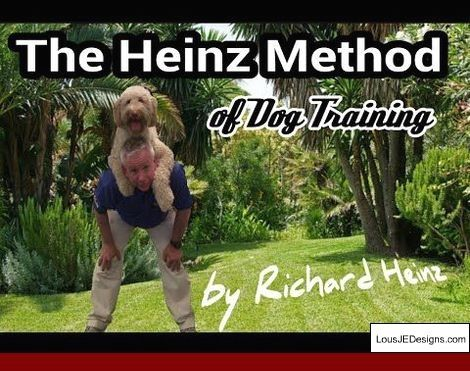 How To Train Your Dog To Use Pee Pads And Pics Of Training Tips