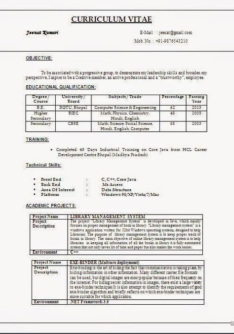cv review sample template example ofexcellent curriculum vitae resume format doc file - Resume File Format