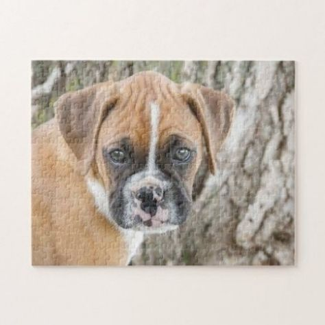 Custom Jigsaw Puzzles- Cute Fawn Boxer Puppy Jigsaw Puzzle boxer love, boxers men, havanese puppies #englishbulldogpuppy #instapuppies #dappledachshund, 4th of july party #Retriever #Labrador #puppy
