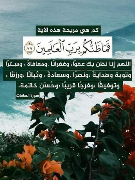 Pin By Juna Mohamed On Islamic Pictures Short Quotes Love Quran Quotes Wise Quotes