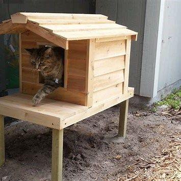 Small Cat Tower15 Kandang Kucing Kucing Kucing Persia