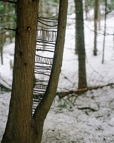 Would be good image to go along with Andy Goldsworthy discussion. Would be good image to go along with Andy Goldsworthy discussion. Art Et Nature, Deco Nature, Nature Crafts, Land Art, Art Environnemental, Twig Art, Art Public, Drawn Art, Outdoor Art