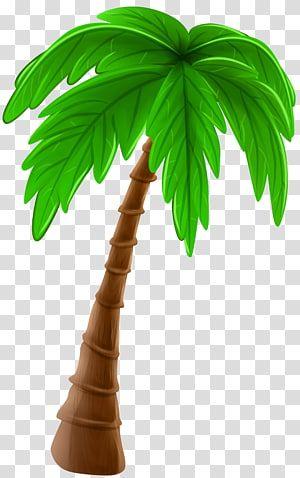 Coconut Tree Illustration Arecaceae Cartoon Tree Palm Tree Cartoon Transparent Background Png Clipart Palm Tree Clip Art Tree Illustration Palm Tree Png