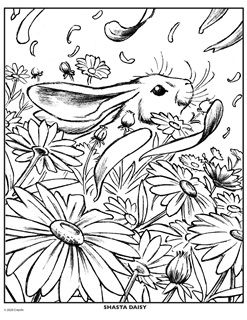 New Coloring Pages Free Coloring Pages Crayola Com Free Coloring Pages Coloring Pages Flower Coloring Pages