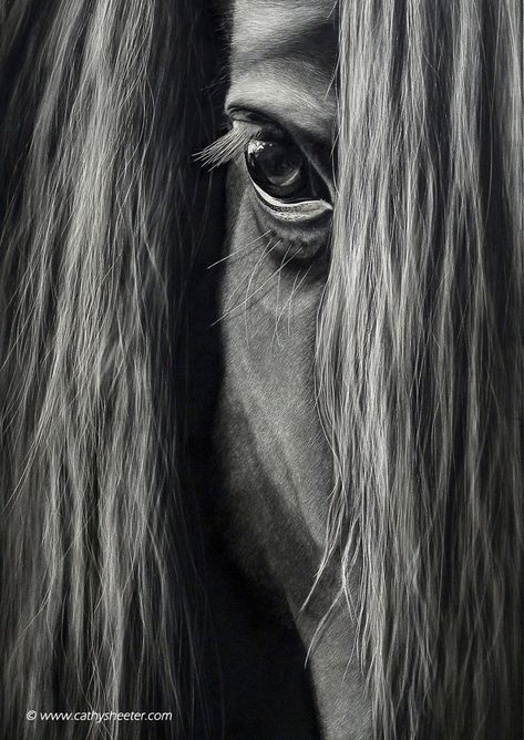 Realistic Drawings Hyper-Realistic Scratchboard Illustrations by Cathy Sheeter – Inspiration Grid All The Pretty Horses, Beautiful Horses, Animals Beautiful, Painted Horses, Horse Drawings, Realistic Drawings, Horse Photos, Horse Pictures, Scratchboard Art