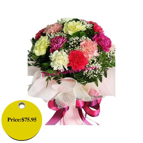 12 Pcs Mixed Carnation In Bouquet Carnations Birth Flowers Flowers Online