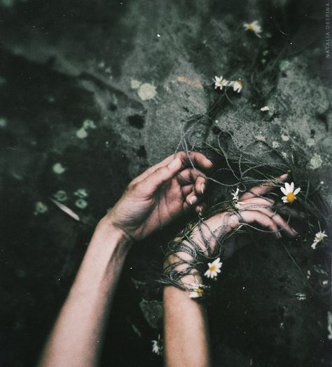 39 trendy ideas for photography dark hands Slytherin Aesthetic, Arte Obscura, Dark Photography, Floral Photography, Character Aesthetic, Persephone, Aesthetic Pictures, Faeries, Underwater Photography