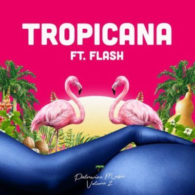 Download Show Dem Camp â Tropicana ft  Flash | GAKAZA COM