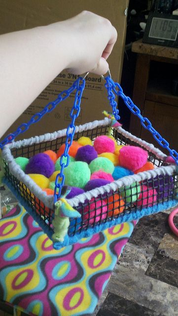 Cats Toys Ideas - Homemade Ball Pit for small animals.) - Ideal toys for small cats Sugar Glider Care, Sugar Glider Toys, Sugar Gliders, Sugar Glider Habitat, Diy Rat Toys, Diy Bird Toys, Diy Hedgehog Toys, Ferret Toys, Cat Toys